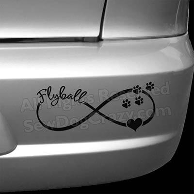 Infinity Flyball Bumper Sticker