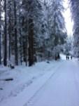 Walking in Narnia