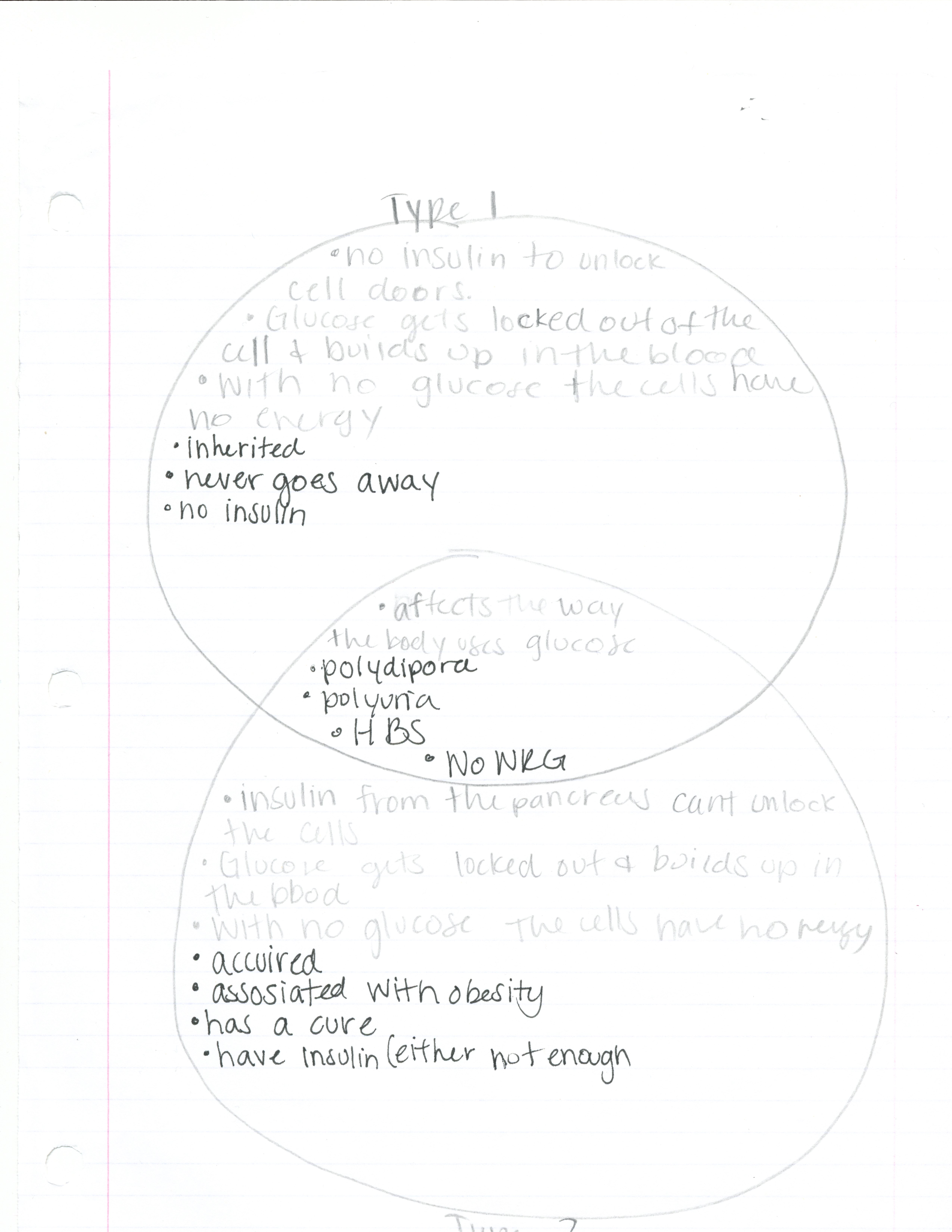 venn diagram type 1 and 2 diabetes labeled of heart on base pbs classroom activities sarah wilson project lead the