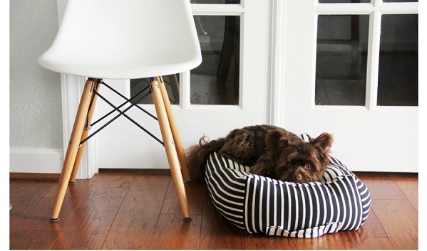 Tutorial: DIY dog bed with a carrying handle