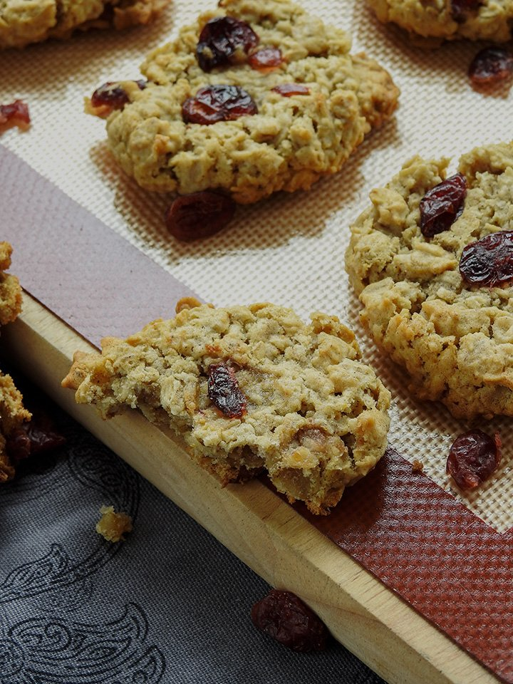 Cranberry Oatmeal Eggless Cookies sewlicioushomedecor.com