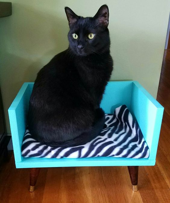 cat bed recycled