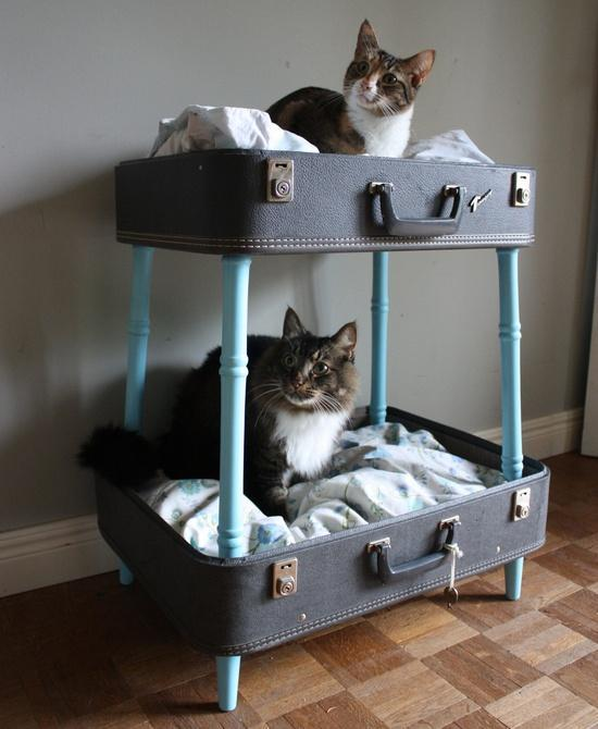 vintage-suitcase-bunk-pet-bed