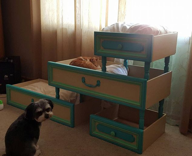 Recyced Upcycled Cat Beds