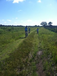 Biking at Myakka River State Park Along the All Weather Trail