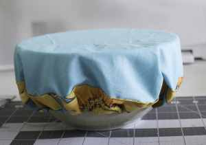 Bowl-Cover-300x211 Perfect Picnic Patterns