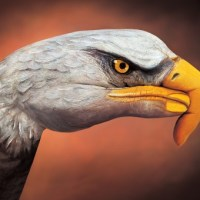 Guido Daniele Hand & Body Painting