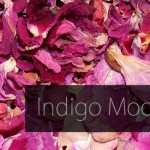 (Re)publication day – Indigo Moore returns