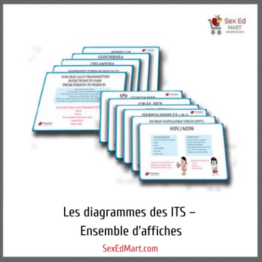 Les diagrammes des ITS – Ensemble d'affiches
