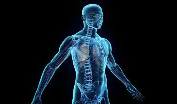 Παραπάνω από το μισό σώμα του ανθρώπου… δεν είναι ανθρώπινο