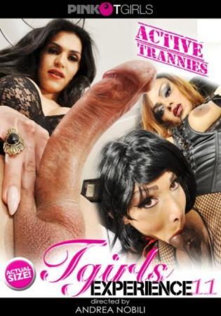 Tgirl Experience 11, XXX DVD, Pink'o Tgirls Porn, Tgirl Experience, Andrea Nobili, Raphaella Ferrari, Veronika Havenna, Kendy, Litizia Sallis, Leticia Freitas, Transsexual, Reality Gonzo