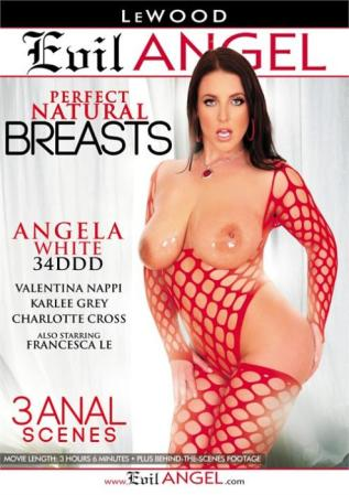 Perfect Natural Breasts Porno DVD from Evil Angel