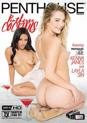 Penthouse Cocktails XXX DVD from Penthouse