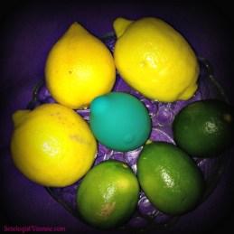 Minna Limon with Lemons and Limes