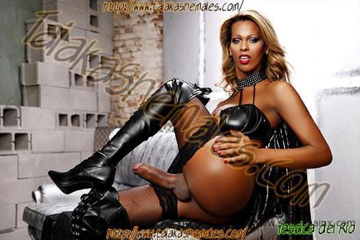 Negras transexuales con rabos muy duros y grandes.