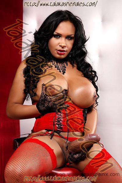 Transexuales de Venezuela desnudas con la polla muy grande.
