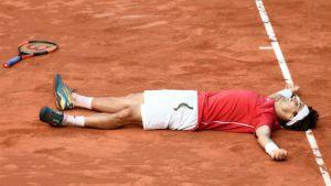 Ferrer tras ganar a Philipp Kohlschreiber