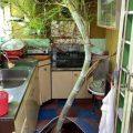 torando a cozinha