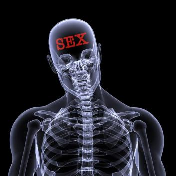 216310079_bigstockphoto_sex_on_the_brain_13560881
