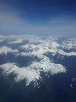 My final flight...destination Calgary! Was a perfect day to see the snow capped rocky mountains!