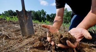 fertilizarea-solului