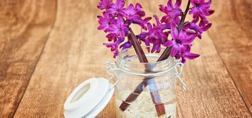 trucuri-pentru-a-pastra-florile-in-vaza