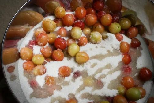 Making mirabelle plum jam.