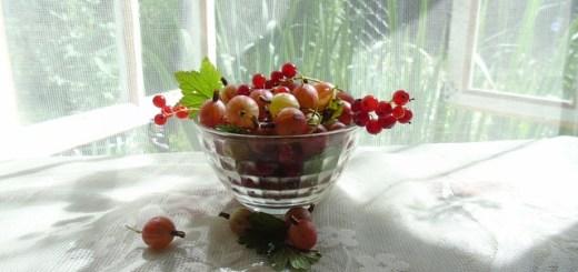 Agrisele. Cele mai puternice fructe din lume
