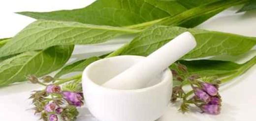tataneasa-8-metode-diferite-de-preparare-a-acestei-plante-care-te-vor-ajuta-in-numeroase-afectiuni