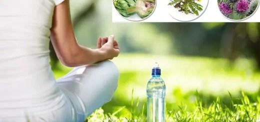 5 plante medicinale care ajuta la dezintoxicare