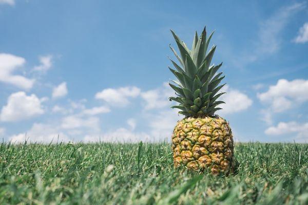 ananas pentru slabit