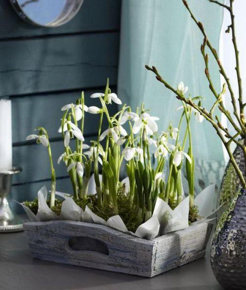 decorarea casei cu flori de primavara 8
