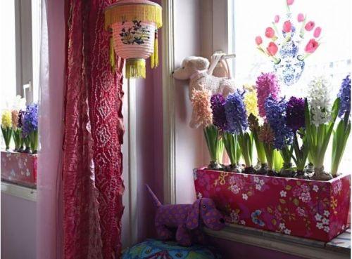 decorarea casei cu zambile in ghiveci