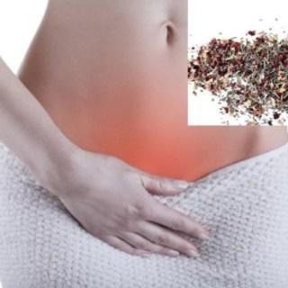 Anexitele. Remedii cu plante medicinale pentru calmarea durerilor