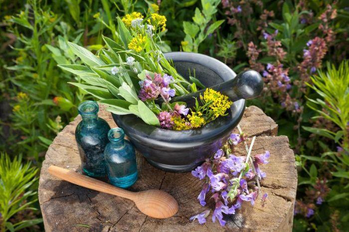 Cele mai bune 9 plante medicinale care te scapa de tuse