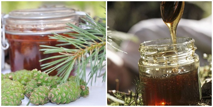 Mierea de pin. O reteta veche pentru stimulare naturala a imunitatii (2)