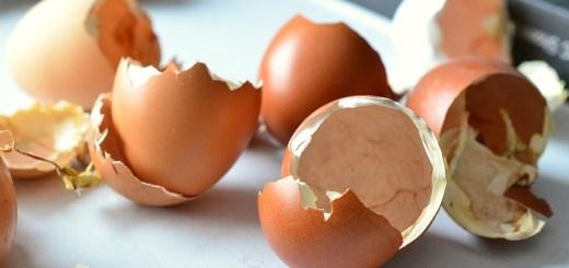 Beneficiile nebanuite ale cojilor de oua