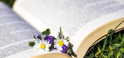 secretul plantelor medicinale