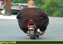 motor fat