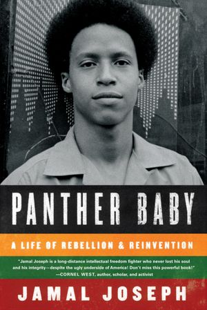 showdown in desire the black panthers take a stand in new orleans