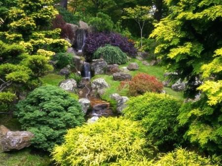 Arboretum Golden Gate Park