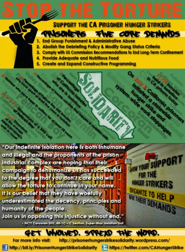 'Stop the torture' excellent hunger strike poster 0713 by PHSS