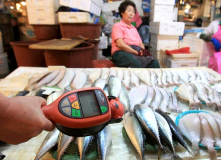 Fish tested for radioactivity after Korea banned fish from Japan by Ahn Young-joon, AP