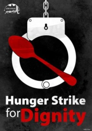 Though Addameer, the source of this graphic, supports prisoners in Palestine, solidarity among hunger strikers around the world is becoming a strong tradition.