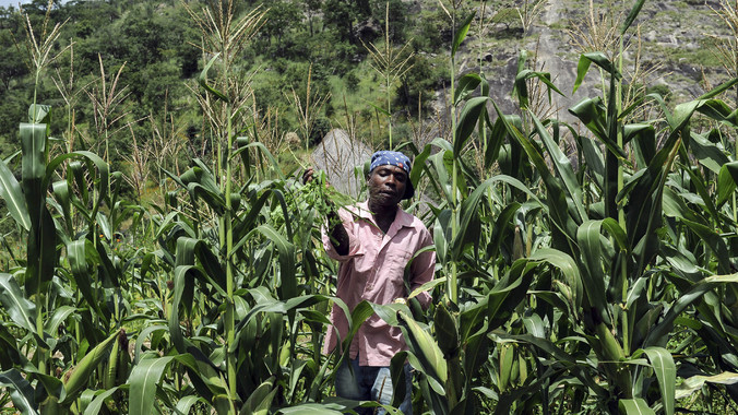 https://i0.wp.com/sfbayview.com/wp-content/uploads/2016/02/Evans-Gororo-farmer-near-Chinamora-Zimbabwe-by-AFP.jpg