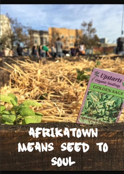'Afrikatown means seed to soil'