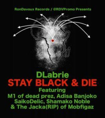 DLabrie 'Stay Black & Die' poster