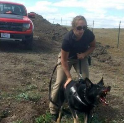 A security guard sics her attack dog, its snout already bloody from biting a pregnant woman, at protesters. Before dawn on Sept. 3, DAPL crews had deliberately bulldozed and destroyed a sacred site just identified the previous day, and, expecting the protesters to be furious, met them with attack dogs and pepper spray. Fortunately, Democracy Now was there to record the attack.