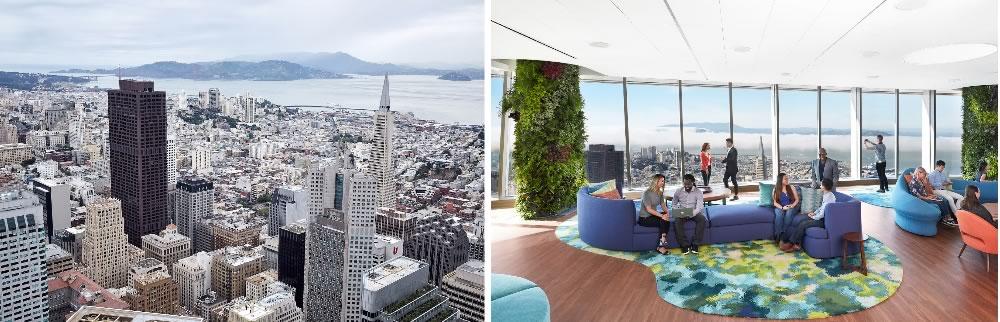Salesforce Ohana views