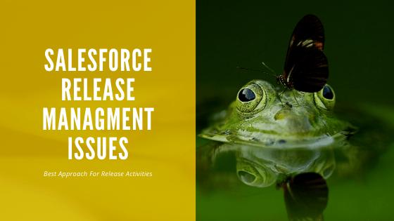 Salesforce Release Management Process
